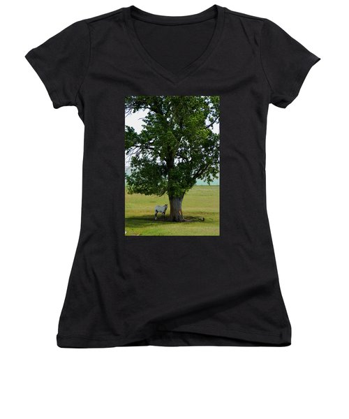 A One Horse Tree And Its Horse					 Women's V-Neck T-Shirt
