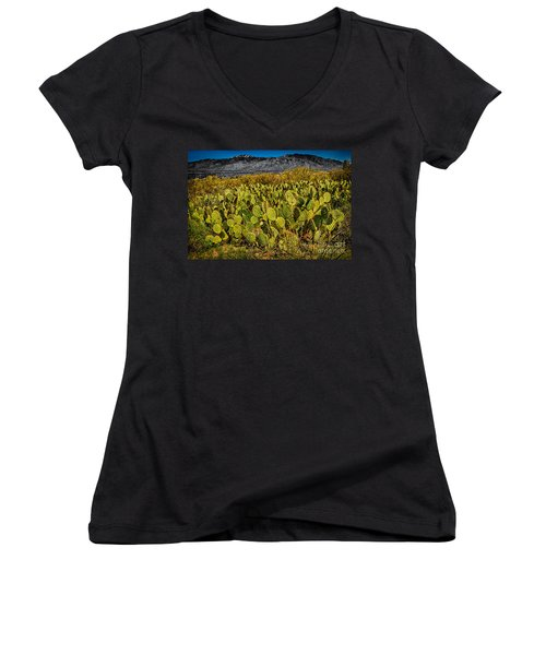 Women's V-Neck T-Shirt (Junior Cut) featuring the photograph A Prickly Pear View by Mark Myhaver