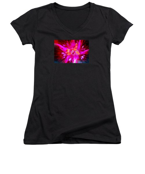 A Splash Of Colour Women's V-Neck T-Shirt (Junior Cut) by Wendy Wilton