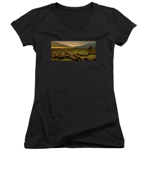 Women's V-Neck T-Shirt (Junior Cut) featuring the photograph A Spot Of Sunshine by Barbara Walsh