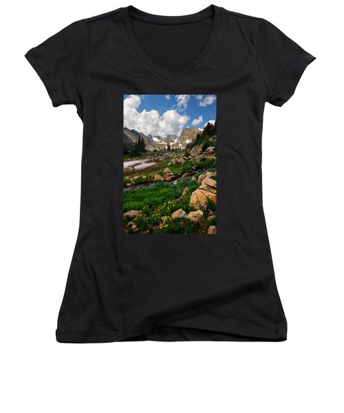 Women's V-Neck T-Shirt (Junior Cut) featuring the photograph A Stream Runs Through It by Ronda Kimbrow