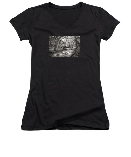A Walk In The Park Women's V-Neck T-Shirt (Junior Cut) by Darryl Dalton