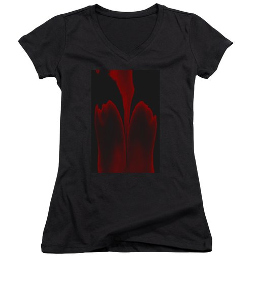 Abstract In Bloom 3 Women's V-Neck T-Shirt (Junior Cut) by James Barnes
