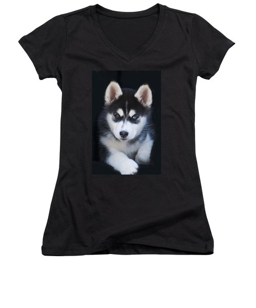 Adorable Siberian Husky Sled Dog Puppy Women's V-Neck T-Shirt (Junior Cut) by Kathy Clark