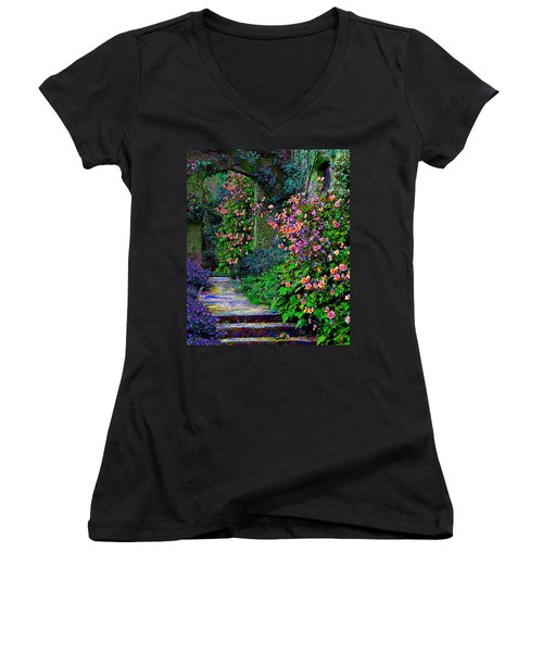 After The Rain Women's V-Neck T-Shirt (Junior Cut) by Michele Avanti