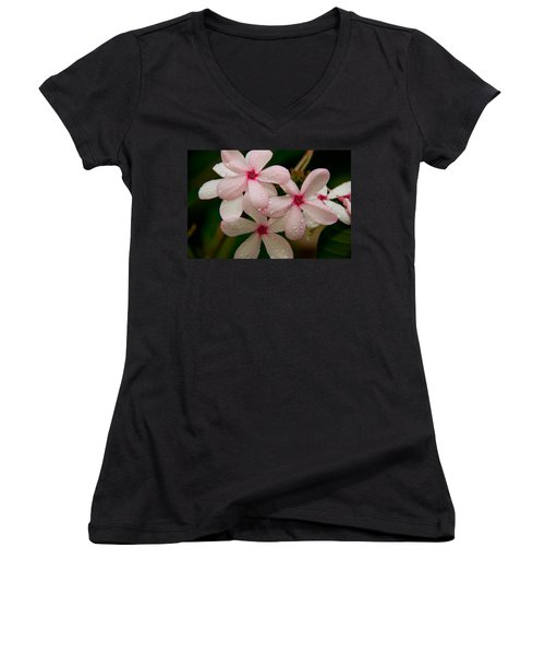 After The Rain - Pink Plumeria Women's V-Neck T-Shirt (Junior Cut) by John Black
