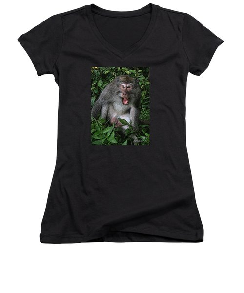 Aggressive Monkey From Bali Women's V-Neck T-Shirt (Junior Cut) by Sergey Lukashin