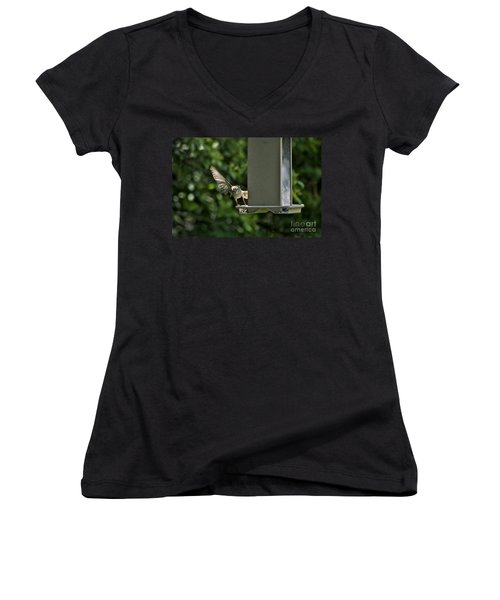 Women's V-Neck T-Shirt (Junior Cut) featuring the photograph Almost A Ruff Bird Landing by Thomas Woolworth