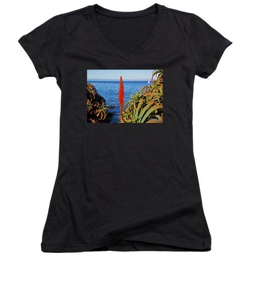 Aloe Arborescens Flowering At Pacific Grove Women's V-Neck T-Shirt (Junior Cut) by Susan Wiedmann