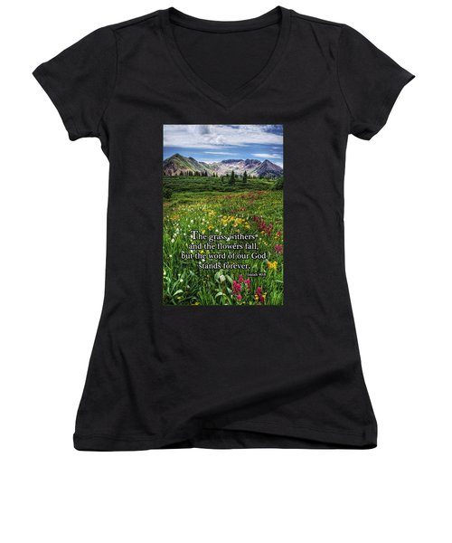Alpine Meadow Women's V-Neck T-Shirt (Junior Cut) by Priscilla Burgers