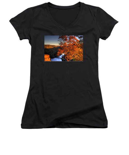 Amazing Tree At Overlook Women's V-Neck T-Shirt