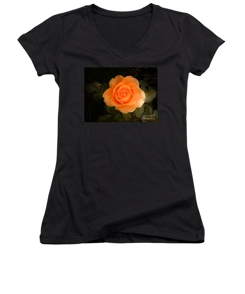 Women's V-Neck T-Shirt (Junior Cut) featuring the photograph Amber Flush Rose by Hanza Turgul