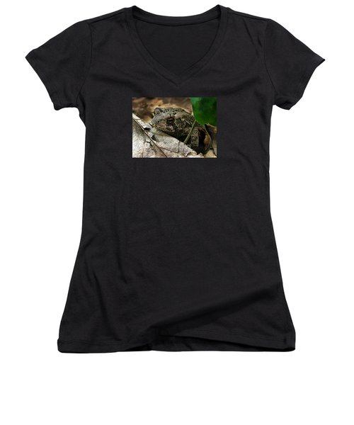 Women's V-Neck T-Shirt (Junior Cut) featuring the photograph American Toad by William Tanneberger