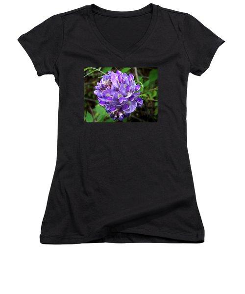 American Wisteria Women's V-Neck T-Shirt