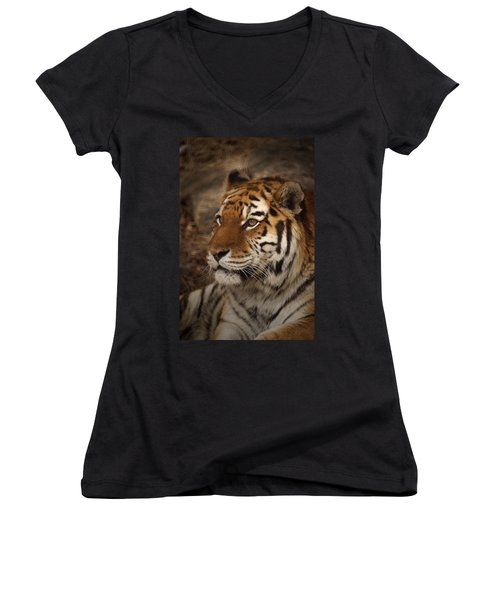 Amur Tiger 2 Women's V-Neck T-Shirt
