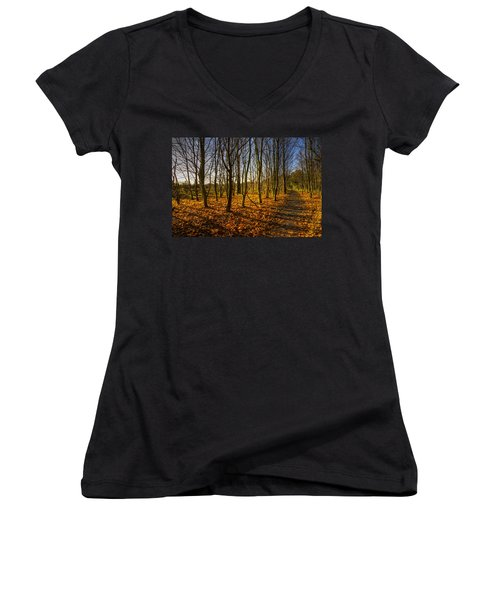 An Autumn Walk Women's V-Neck (Athletic Fit)