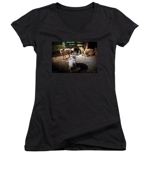 Angustown Piggies Women's V-Neck T-Shirt (Junior Cut) by Cynthia Lassiter