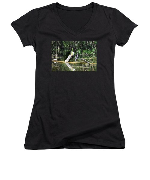 Anhinga  Women's V-Neck (Athletic Fit)