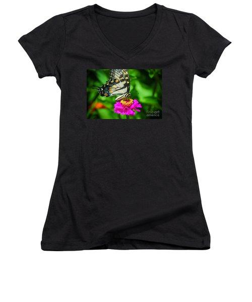 Anise  Swallowtail Butterfly Women's V-Neck T-Shirt