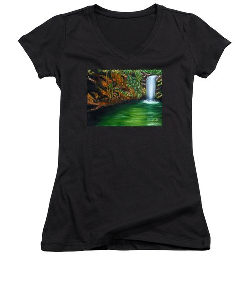 Annadale Waterfall Women's V-Neck (Athletic Fit)