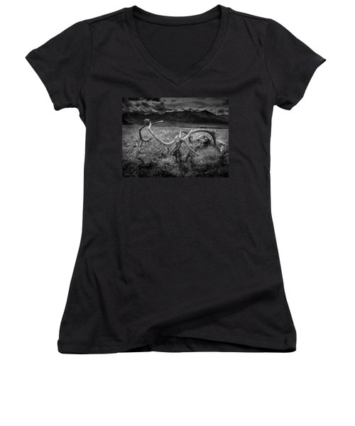 Antlers In Black And White Women's V-Neck T-Shirt (Junior Cut) by Andrew Matwijec