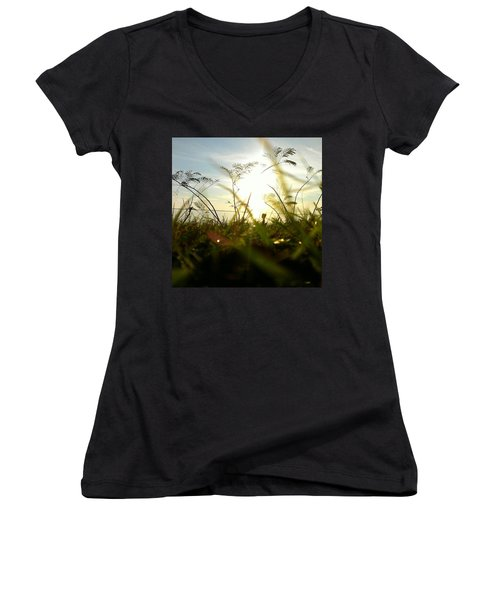 Women's V-Neck T-Shirt featuring the photograph Ant's Eye View by Thomasina Durkay