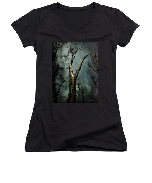 Appeal To The Sky Women's V-Neck T-Shirt (Junior Cut) by Cynthia Lassiter