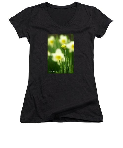 April Showers Women's V-Neck T-Shirt (Junior Cut) by Joan Davis