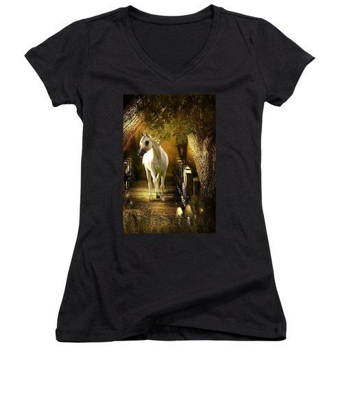 Arabian Dream Women's V-Neck T-Shirt