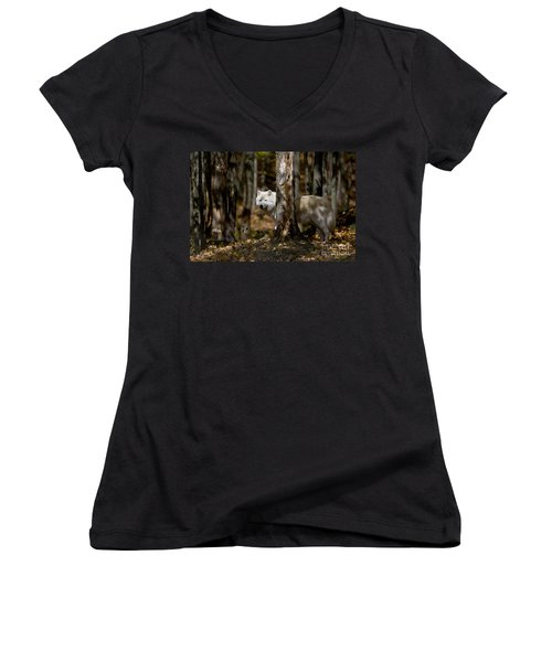 Women's V-Neck T-Shirt (Junior Cut) featuring the photograph Arctic Wolf In Forest by Wolves Only
