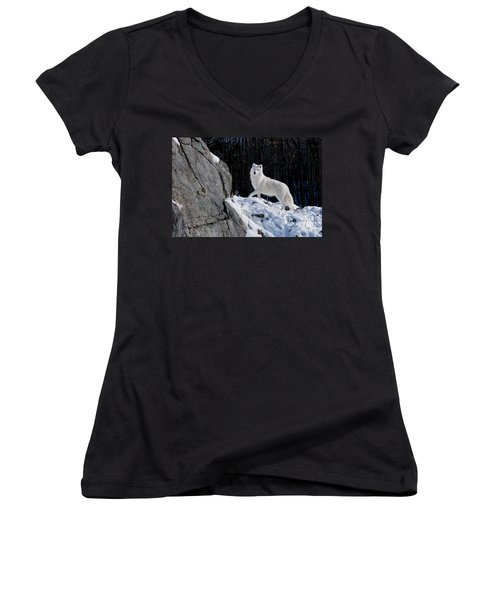 Women's V-Neck T-Shirt (Junior Cut) featuring the photograph Arctic Wolf On Rock Cliff by Wolves Only