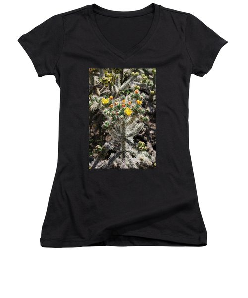 Arizona Cactus Women's V-Neck