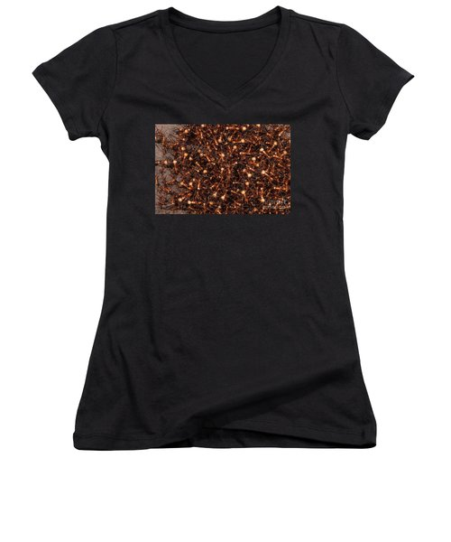 Army Ants Women's V-Neck T-Shirt (Junior Cut) by Art Wolfe