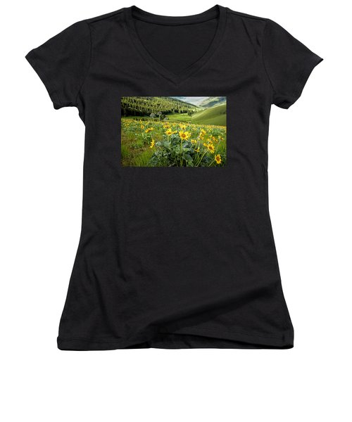 Women's V-Neck T-Shirt (Junior Cut) featuring the photograph Arrow Leaf Balsam Root by Jack Bell