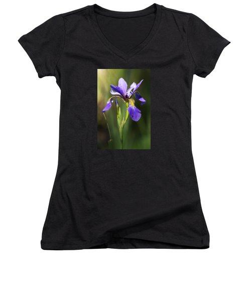 Artsy Iris Women's V-Neck T-Shirt (Junior Cut) by Shelly Gunderson