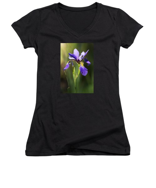 Artsy Iris Women's V-Neck T-Shirt