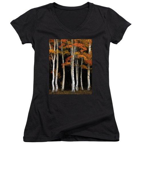 Aspen Contrast Women's V-Neck T-Shirt (Junior Cut) by Leland D Howard