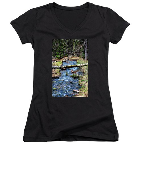 Women's V-Neck T-Shirt (Junior Cut) featuring the photograph Aspen Crossing Mountain Stream by Barbara Chichester