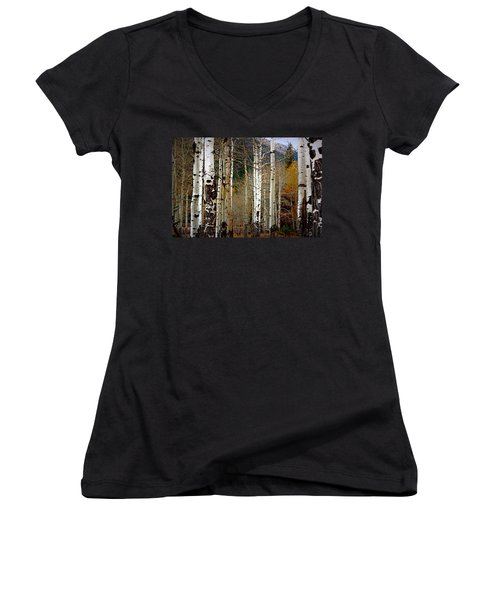 Aspen In The Rockies Women's V-Neck T-Shirt (Junior Cut) by Lynn Sprowl