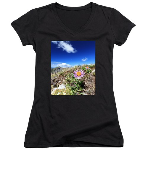 Aster Alpinus Women's V-Neck T-Shirt (Junior Cut) by Antonio Scarpi