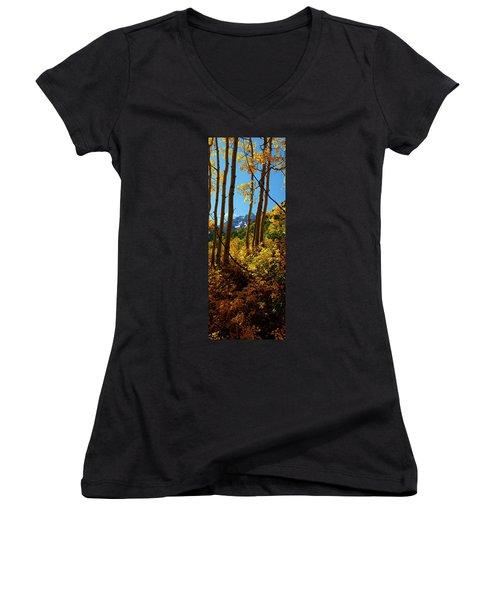 Autumn Brilliance 2 Women's V-Neck T-Shirt (Junior Cut) by Jeremy Rhoades