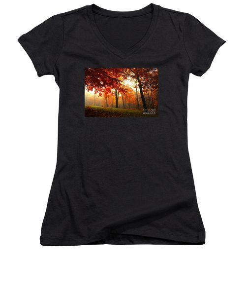Autumn Canopy Women's V-Neck T-Shirt (Junior Cut) by Terri Gostola