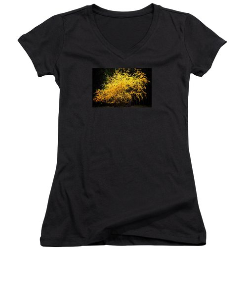 Women's V-Neck T-Shirt (Junior Cut) featuring the photograph Autumn Colors 4 by Newel Hunter