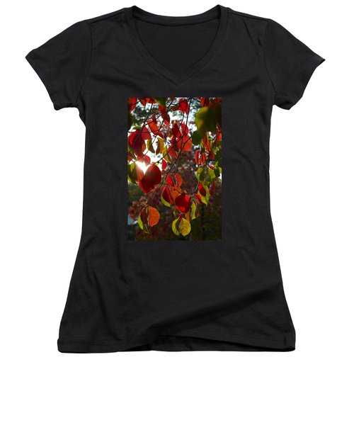Autumn Dogwood In Evening Light Women's V-Neck T-Shirt (Junior Cut)