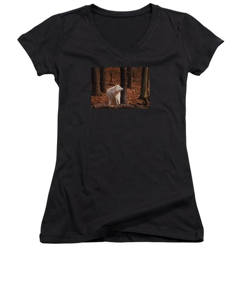 Autumn Gaze Women's V-Neck T-Shirt (Junior Cut) by Lori Tambakis