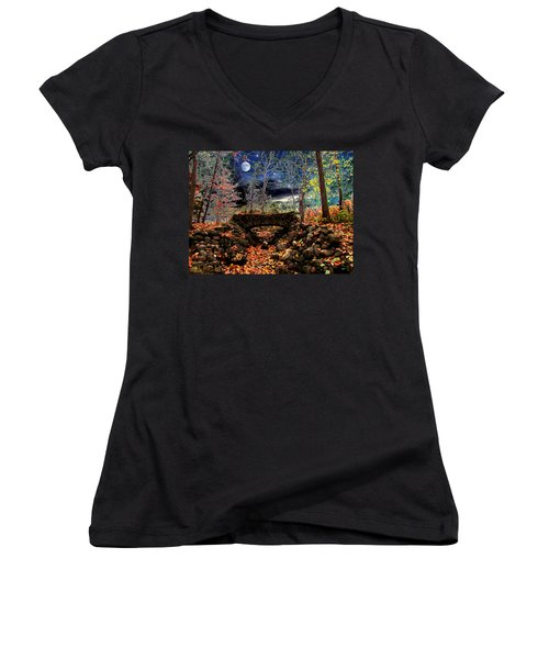 Autumn In The Meadow Women's V-Neck T-Shirt (Junior Cut) by Michael Rucker