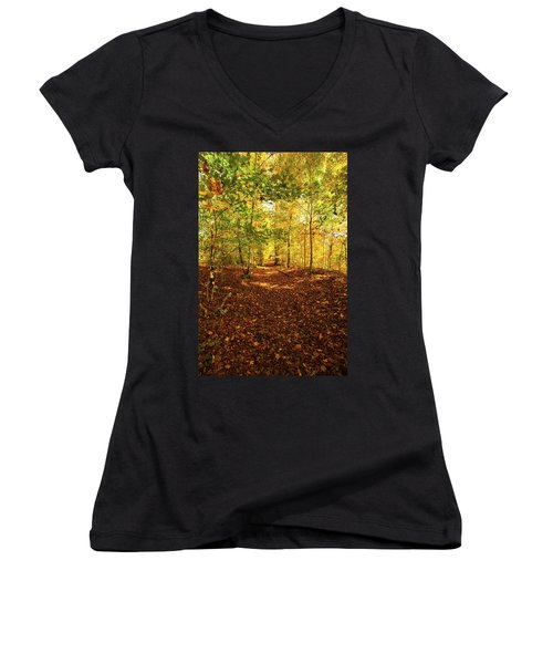Autumn Leaves Pathway  Women's V-Neck (Athletic Fit)