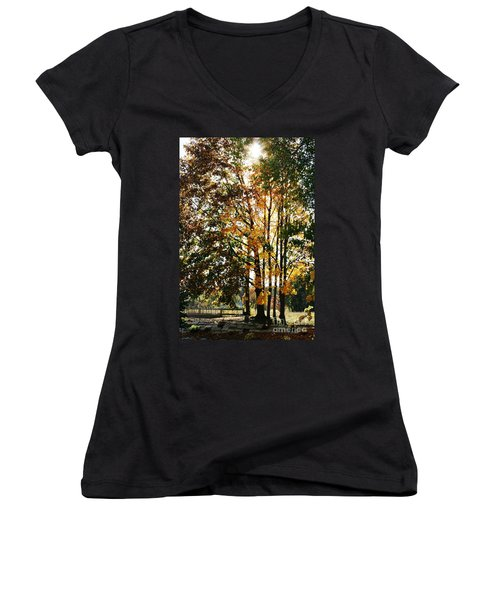 Autumn Light Women's V-Neck T-Shirt (Junior Cut) by Barbara Bardzik