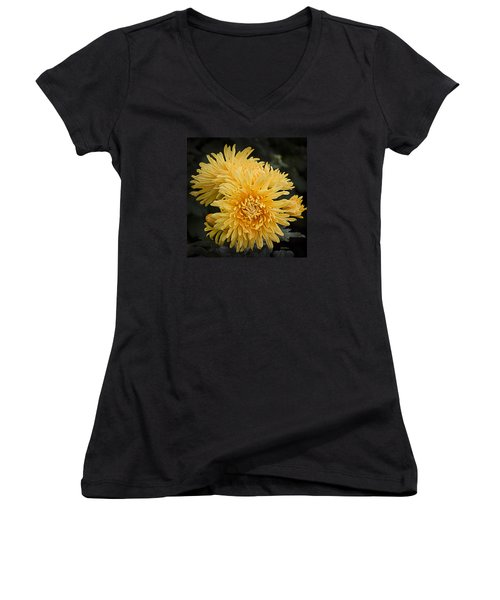 Autumn Mums Women's V-Neck T-Shirt (Junior Cut) by Julie Palencia