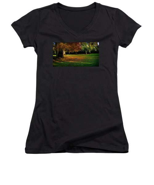 Autumn Women's V-Neck T-Shirt (Junior Cut) by Nina Ficur Feenan